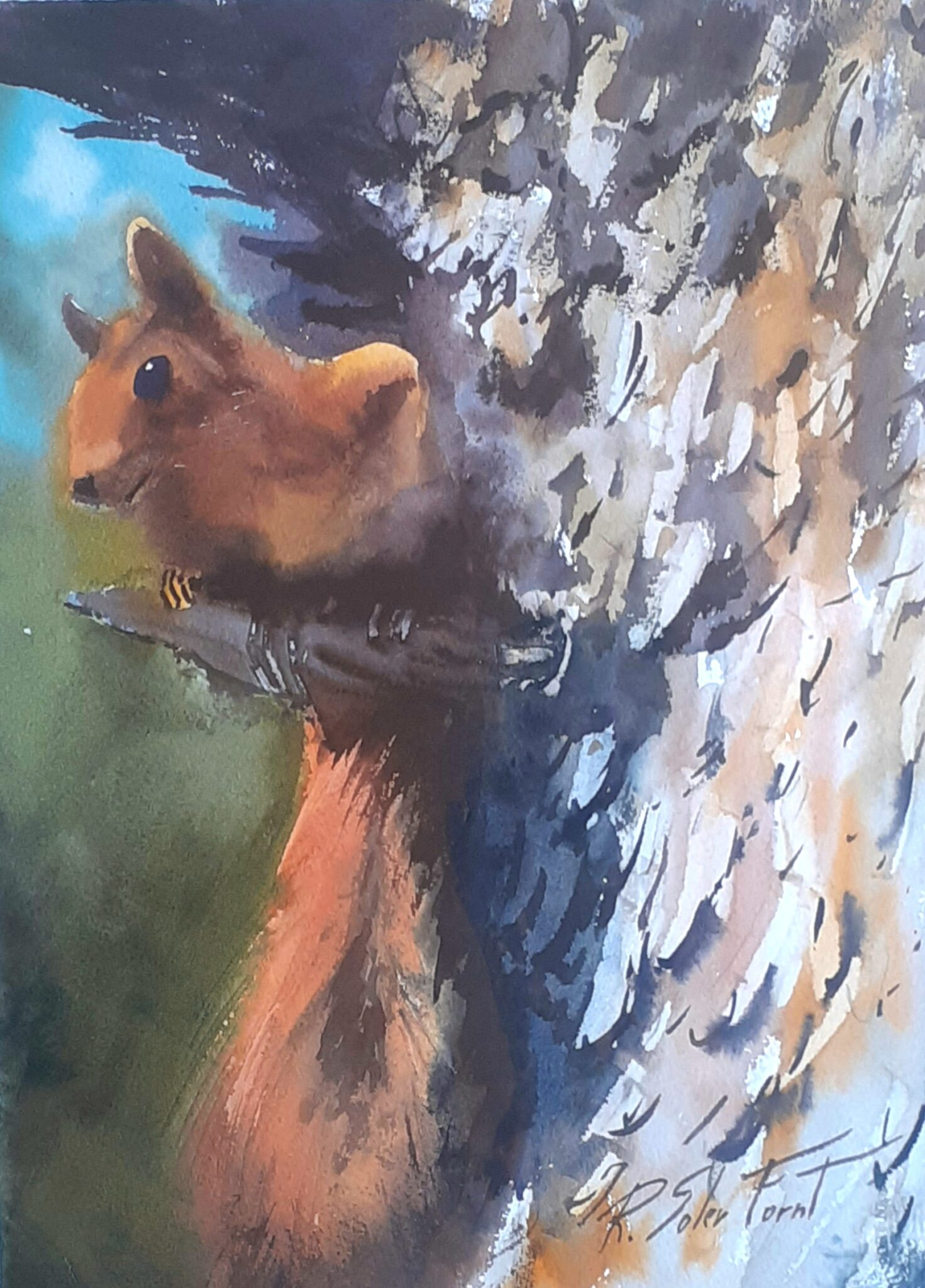 Esquirol, 25 x 35 cm. (Disponible)